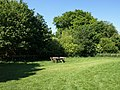Corner of Avebury car park - geograph.org.uk - 1347707.jpg