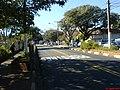 Corredor de ônibus das Amoreiras - Que liga o Centro ate o Bairro Campos Elisios - panoramio.jpg