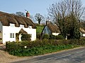 Cottages at Alton Pancras - geograph.org.uk - 386088.jpg