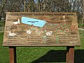 Craiglockhart Nature Trail - geograph.org.uk - 1220464.jpg