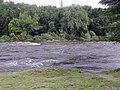 Creciente del río San Antonio - panoramio.jpg
