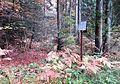 Crngrob Slovenia - Crngrob 4 Mass Grave.JPG