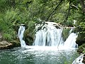 Croatia P8134643 (3936769147).jpg