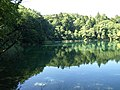 Croatia P8144704 (3939088222).jpg
