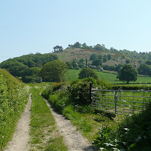 Croft Ambrey - geograph.org.uk - 802708