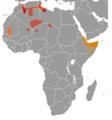 Ctenodactylidae range map.png