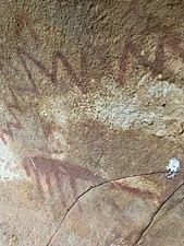 Cueva de las Palomas 1 Arte rupestre 10.jpg