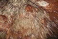 Cueva del Rey Salomon-Tasmania-Australia13.JPG