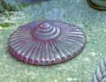 Cyclomedusa (medusoid).png