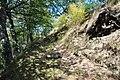 Dacian Fortress of Capalna 071.jpg