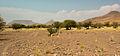 Damaraland Landscape (3690392214).jpg