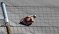 Dani Pedrosa 2008 Indianapolis.jpg
