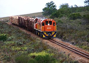 Two-foot-gauge railways in South Africa - A Spoornet Class 91-000 on the Avontuur Railway near Humansdorp