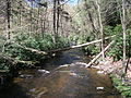 Delaware Water Gap National Recreation Area - Pennsylvania (5677789457).jpg