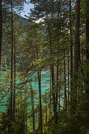 Der versteckte Weißensee.jpg