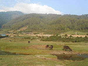 Dhorpatan Hunting Reserve - View of Dhorpatan Hunting Reserve.