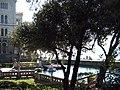 Die Burg...die Pier und die Marina - panoramio.jpg