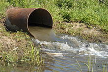 A typical stormwater outfall.