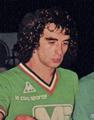 Dominique Rocheteau (1978).png