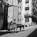 Door muilezel getrokken kar in Barcelona, Bestanddeelnr 254-0758.jpg