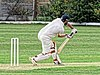Dunmow CC v Brockley CC at Great Dunmow, Essex, England 39.jpg