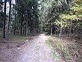 Dusetų sen., Lithuania - panoramio (94).jpg