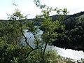 Dyje pri hrade Bítov - panoramio.jpg