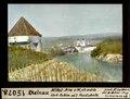 ETH-BIB-Rheinau, Mittel-Arm von Westen, abwärts, Kerb-Reben mit Frostschutz-Dia 247-15078.tif