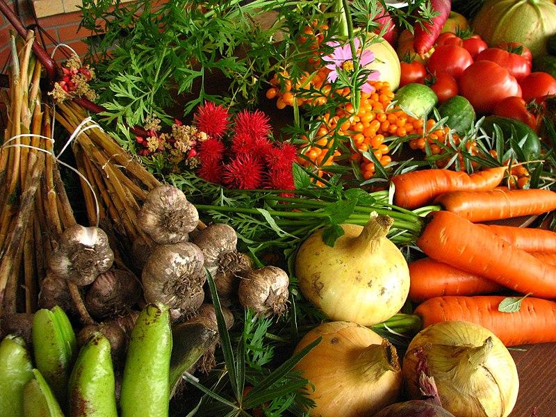 File:Ecologically grown vegetables.jpg