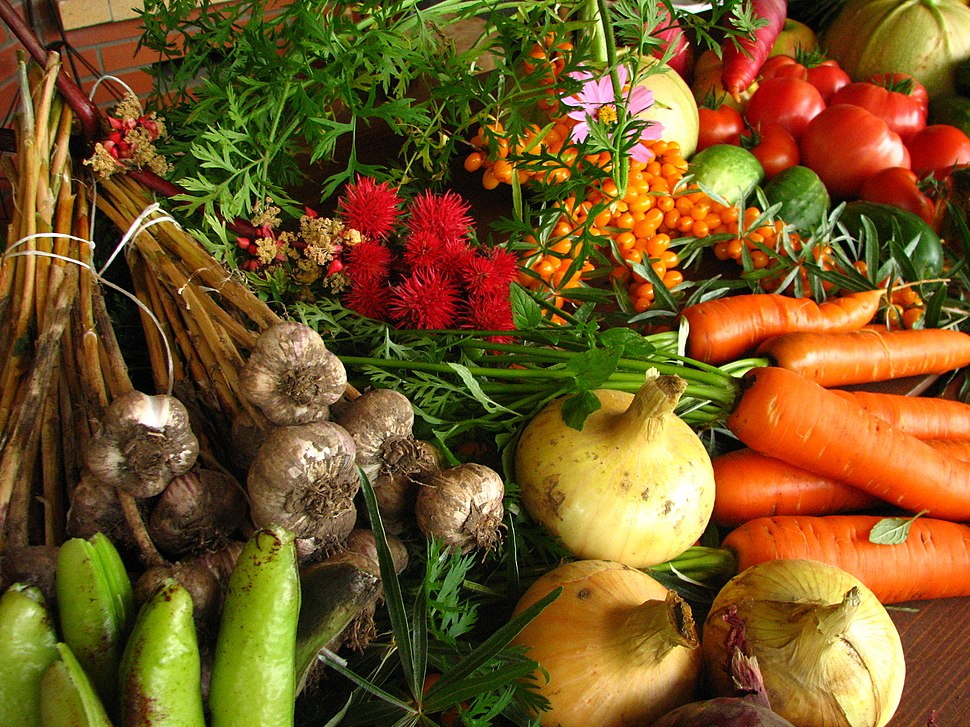 Ecologically grown vegetables
