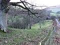 Edw valley - geograph.org.uk - 684966.jpg