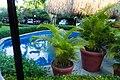 El Cortecito, Punta Cana 23000, Dominican Republic - panoramio (5).jpg