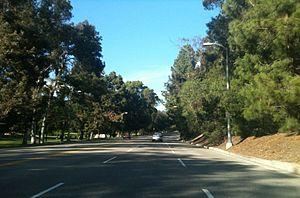 Elysian Park, Los Angeles - Image: Elysian park