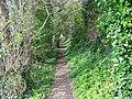 Enclosed footpath, Rockbourne - geograph.org.uk - 740375.jpg