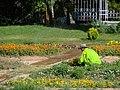 Eram Garden Shiraz باغ ارم شیراز 07.jpg