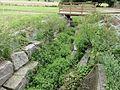 Erbéviller-sur-Amezule (M-et-M) source de l'Amezule.jpg
