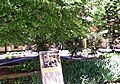 Espace Van Gogh 梵谷療養院 - panoramio.jpg