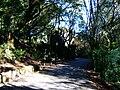 Estrada no monte da Penha.jpg