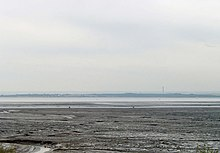 Estuarial mudflats at Leigh-on-Sea - geograph.org.uk - 778899.jpg