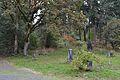 Eugene Masonic Cemetery (Eugene, Oregon).jpg