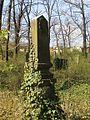 Evangelický hřbitov ve Strašnicích 80.jpg