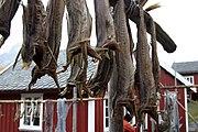 Ewf 7092 noorwegen 2007