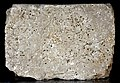 F8, Parthian Script, Inscribed Stone Blocks of Paikuli Tower.jpg
