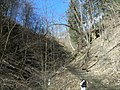 Fall Run Park in Shaler Township, late winter - 11.jpeg