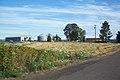 Farm Land (3735634511).jpg