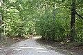 Farmington driveway.jpg