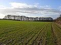Farmland, Pyrton - geograph.org.uk - 720449.jpg