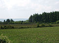Farmland and forestry near Corbally - geograph.org.uk - 486908.jpg