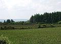 Farmland and forestry near Corbally - geograph.org.uk - 486908.jpg