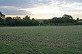 Farmland near Desford - geograph.org.uk - 245363.jpg